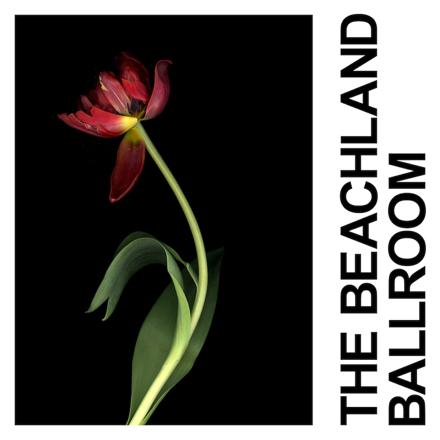 IDLES - The Beachland Ballroom