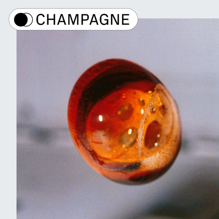 🥂 Champagne