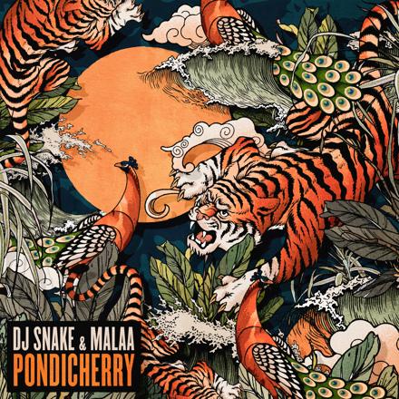 DJ Snake & Malaa Pondicherry