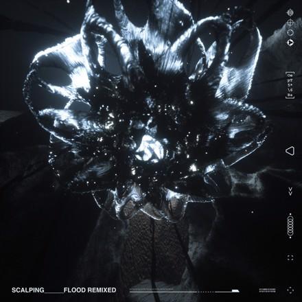 SCALPING - Flood Remixed