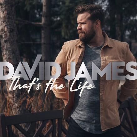David James - That's The Life