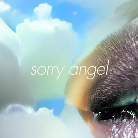 Alex Beaupain - Sorry Angel