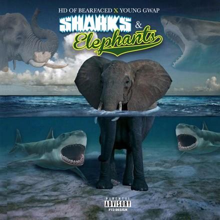Hd of Bearfaced, Young Gwap - Sharks & Elephants