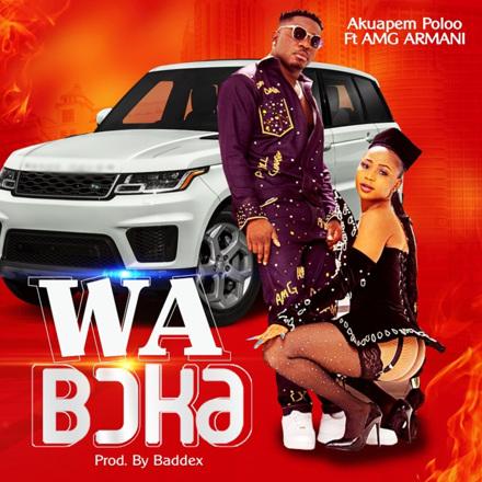 Akuapem Poloo - Wa Boka (feat. AMG Armani) - Single